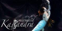 Una Sirena fantastica e dove trovarla!