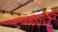 L'Associazione Festival Italiani di Cinema organizza un incontro virtuale sull'esperienza online dei festival di cinema italiani