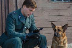 Zack cane eroe, disponibile per il noleggio digitale