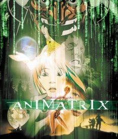 Animatrix: i cortometraggi