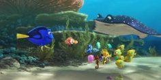 Si ritorna nell'oceano di Nemo