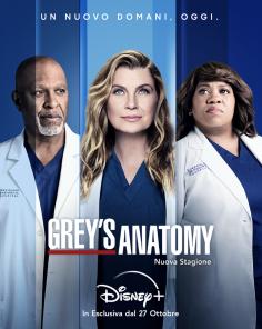 Grey's Anatomy: la 18esima stagione su Disney+