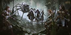 D&D introduce la possibilità di cambiare sesso per gli elfi