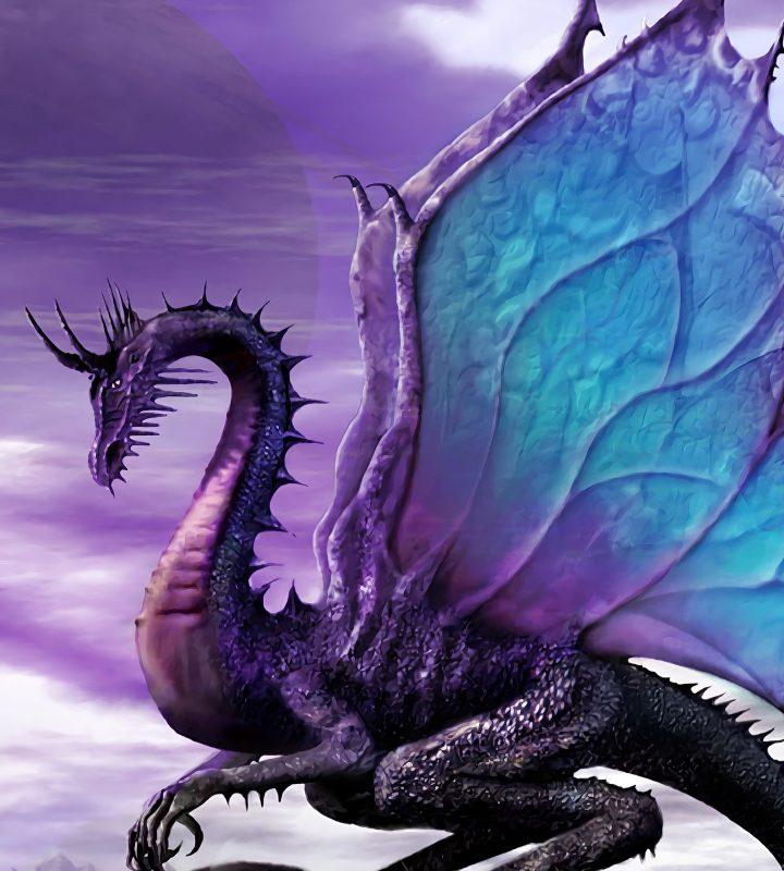 Live Action Online Game: La pista di atterraggio per draghi