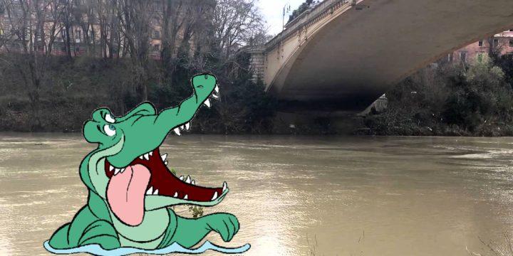 Sgranocchio, la leggenda del coccodrillo di Roma